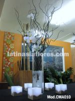 white phaleanopsis orchids wedding centerpiece