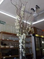 white dendrobium orchids wedding centerpiece