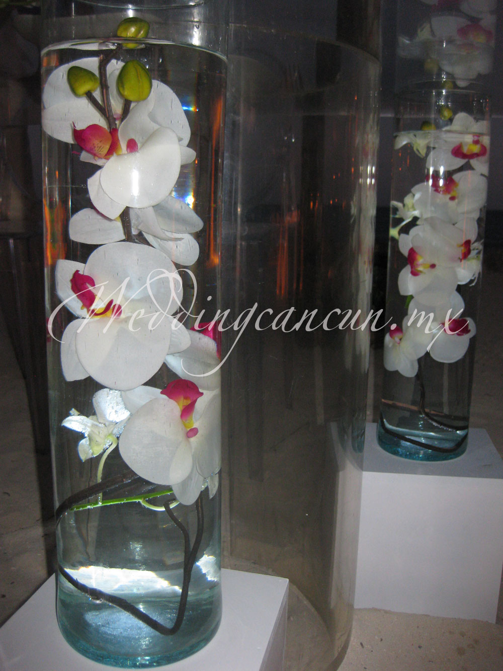 illuminated cylinder vases