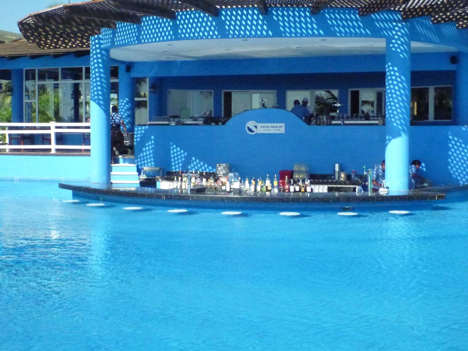 Zavas swim up bar