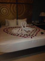 Honeymoon Night