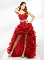 Beautiful Designer Hi-Low Reception Gown
