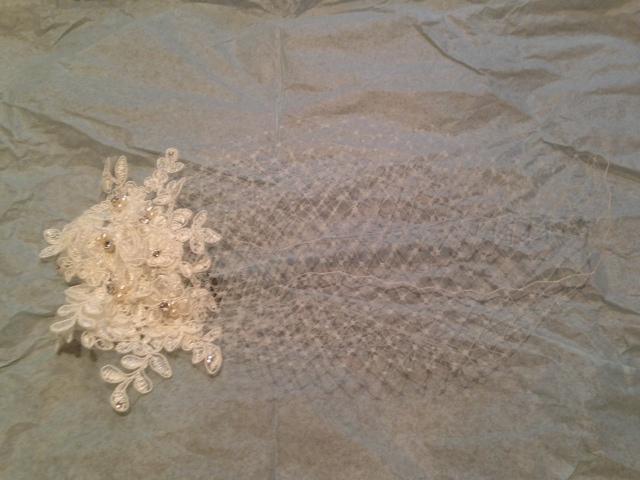 Beautiful 9 inch Birdcage veil!