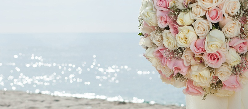 Pure Glamour   Flowers Ocean