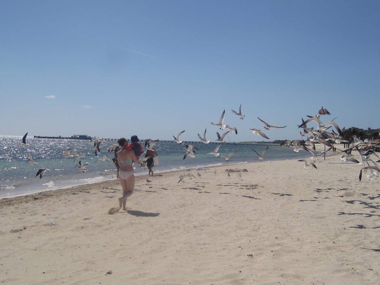 The beach- really nice!
