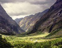 NZ TH