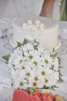 Precious Gem package cake for up to 6 people with free daisy bouquet (option between carnation & daisy)