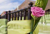 Now Sapphire Wedding setups  wedding venues 532013