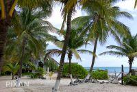 Mexican wedding venues and setups | Playa Secreto | L1044063 3061519307 O