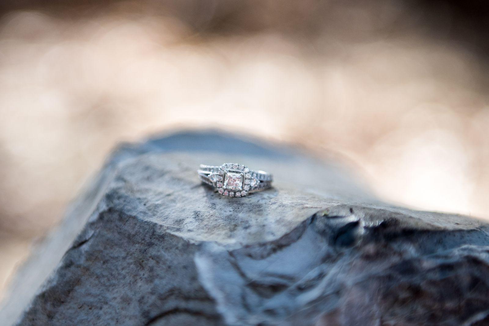 Kyle & Janelle Engagement 165