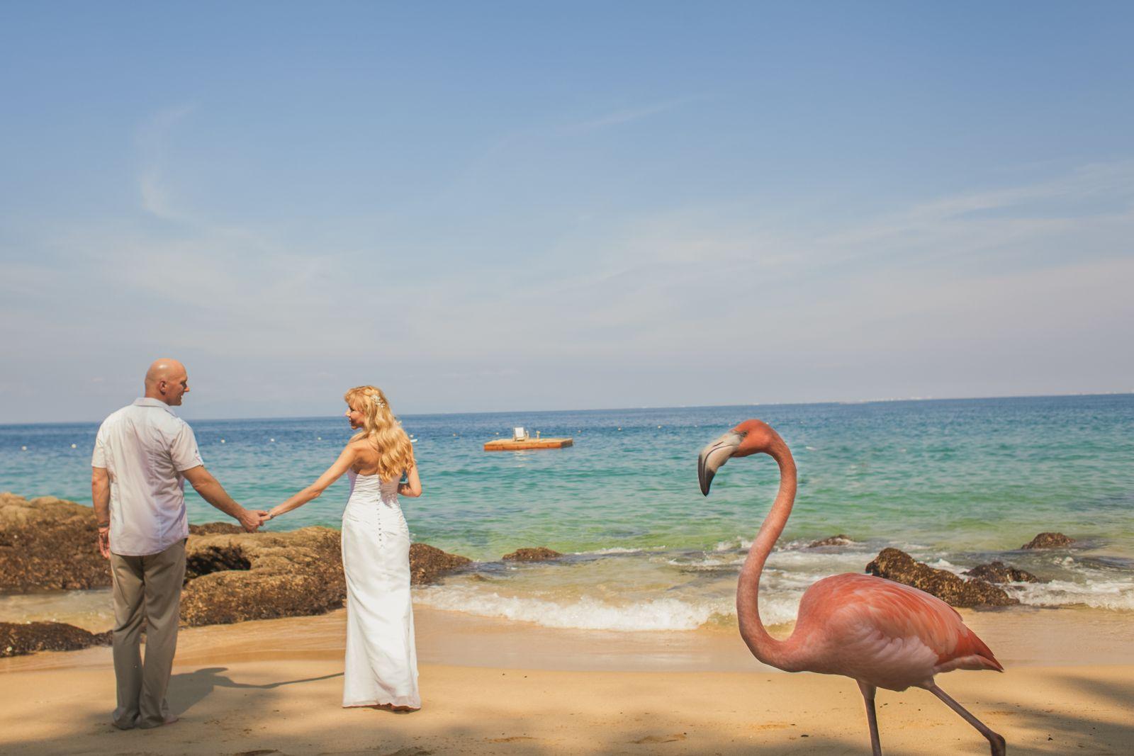 beach wedding at Las Caletas- Puerto Vallarta Mex.
