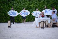 Surprise Playa Proposal