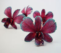 They are preserved dried orchid from fresh cut natural flower. They have longer storage life than fresh flower for years. You can keep your precious memorable moment for many years. www.prosco.co.th