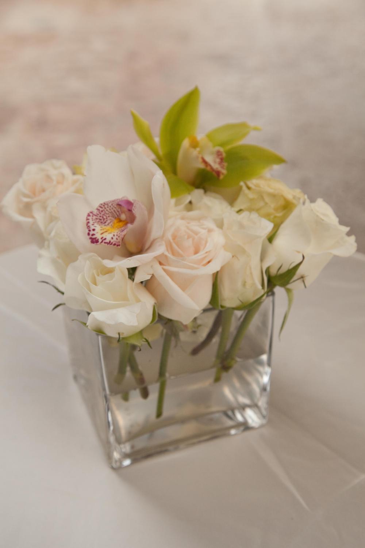 Cymbidium + Roses
