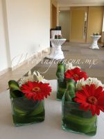 red gerbera daisies and white alstroemeria centerpiece