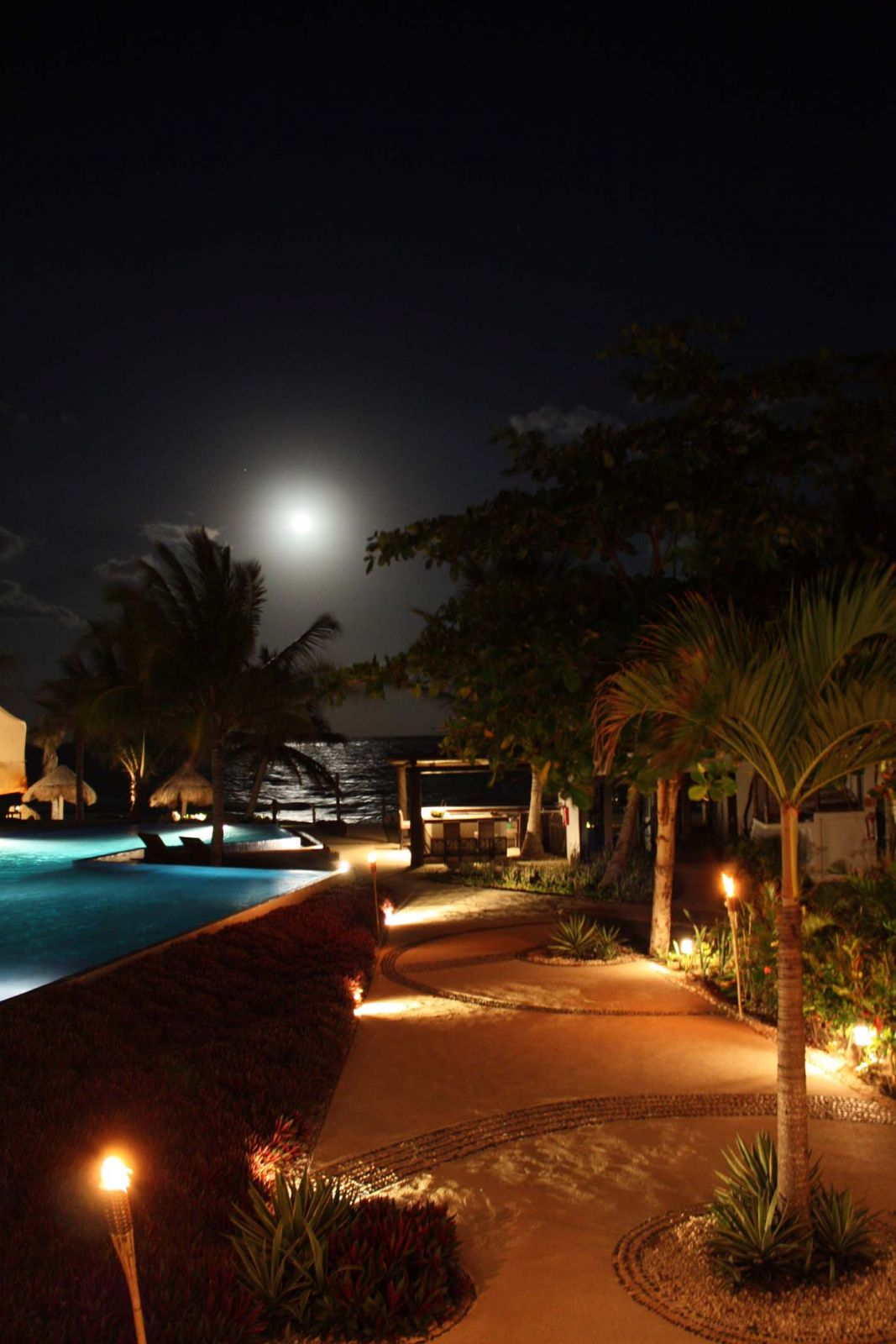 Le Reve by night