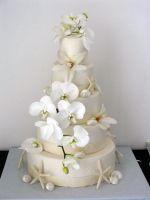 white seashell cake.jpg