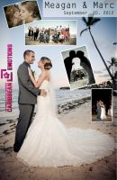 Dreams Palm Beach 2013 Brides