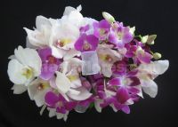 Fyusha and white bouquet. A combination of phaleanopsis orchids, dendrobium orchids and cymbidium orchids.